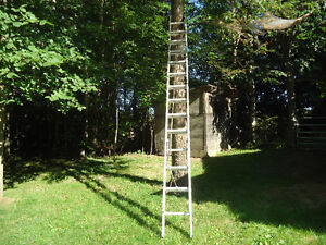Extension ladder   28 Ft   Price Reduced