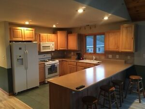 home for sale on 3 acres in the heart of lower Michigan. Kawartha Lakes Peterborough Area image 8