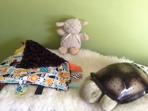 Sleep sheep, twilight turtle and minky taggy blanket