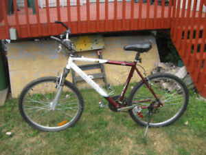Bicycle pour adulte Raleigh Portage 21 vitesses