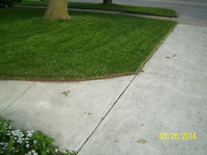 Quality Lawn Cutting and Garden Care Services Kitchener / Waterloo Kitchener Area image 9