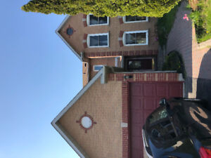 Freshly painted 3 bedroom house for lease
