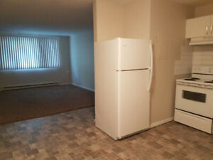 Bright And Updated 2 Bedroom Ground Floor Apartment $1080/Month