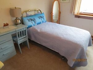Great set of twin beds-newer mattresses