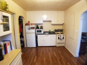 Newly Renovated Open Concept Spacious 1 bdrm, large kitchen