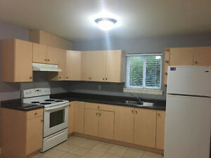 BRAND NEW WALKOUT BASEMENT 2 BED 1 BATH WITH MOUNTAIN VIEW
