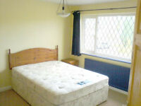 Attractive Double Room for Professional (Mon-Fri)