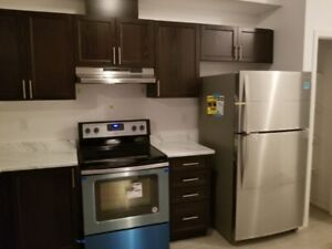 A BRAND NEW  T/HOME IN STONEY CREEK HAMILTON FOR RENT 1ST APRIL