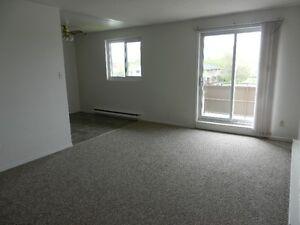 Lasalle Blvd Spotless, Modern and Spacious 1 bedroom apt