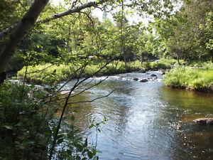 terre a bois avec riviere