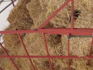 straw for sale Kingston Kingston Area image 1