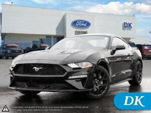 2018 Ford Mustang EcoBoost Fastback w/10 Spd Auto, Performance P