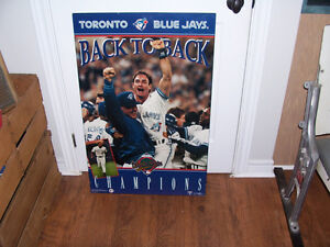Blue Jays Hard Mount Picture 35 by 23