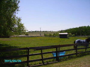 9.24 Acres on Wye Rd. & RR222