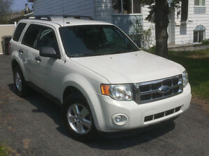 2012 Ford Escape XLT V6 (4x4)