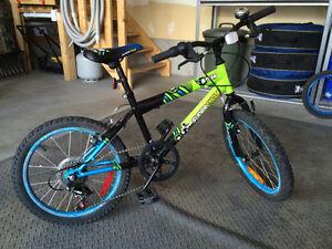 "18"" Supercycle Team 8 Kids Bike"