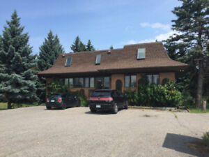 Commercial Building for Lease in Newmarket