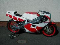 YAMAHA TZ 250 S RACE BIKE 2KM 1986