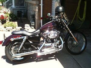 2006 Harley Davidson 1200 custom