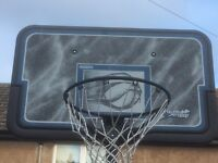 Lifetime basketball portable hoop