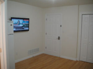 Studio Apartment for rent in Newmarket near Magna Company