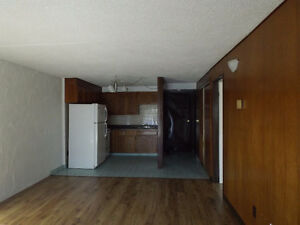 large one bedroom and den secure building with intercom