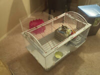 Living world guinea pig / rabbit / small animal cage & accesorie