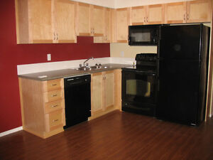 Top Floor One Bedroom Condo Available July 1st