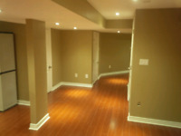 Basement Renos/ Help wanted