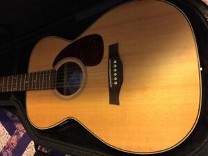 Seagull Maritime SWS Concert Hall SG Guitar
