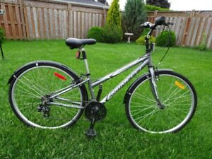 Minelli Bicycle in top condition