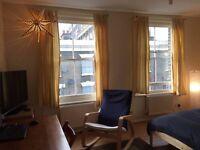 Huge double room in Zone 1 / Elephant, Southwark