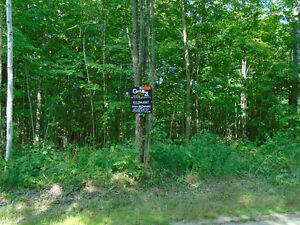 10 Acre building lot, just east of Kaladar!!!!