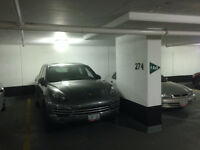 Underground Parking for Rent - Elizabeth Street (Bay & Dundas)
