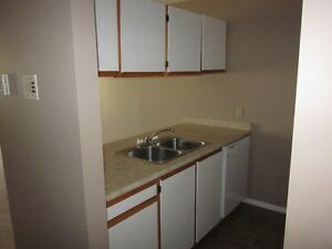 NEW PRICE !!! DOWNTOWN BACHELOR UNIT AVAILABLE !!!!