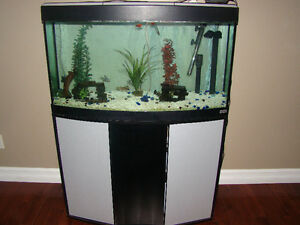 fluval fish tank, stand and canister filter