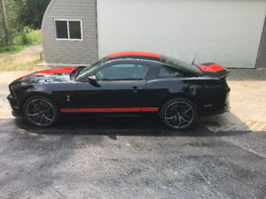 2013 Mustang Shelby GT - 500 for sale.
