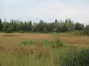 Raw Land 5 Acres, Along Highway 27 N, $45,000 Fort St. James