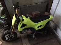 Race mini dirt bike 50cc