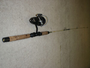 Cannes a peche / Fishing rod