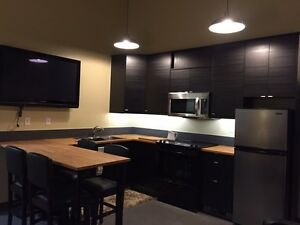 1 Bedroom Furnished Executive Studio Suite Prince George British Columbia image 1