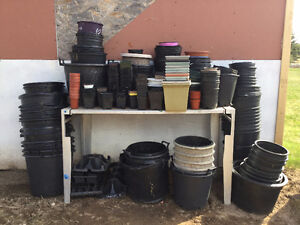 Assorted greenhouse pots for sale