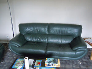 European modern style leather sofas