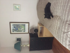 CHAMBRE A LOUER ROOM TO RENT WEST ISLAND $400.