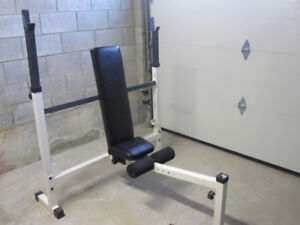 Decline Incline Olympic Bench gym weights exercise