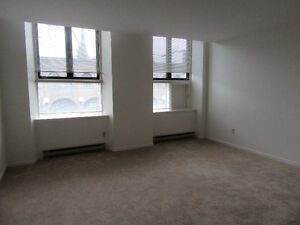 Updated, Large, One Bedroom Apt. Downtown, Highland Associates