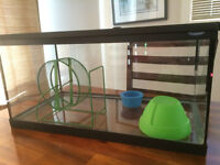 Hamster cage/ aquarium and food