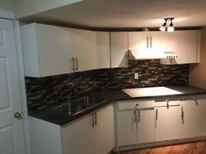 A Beautifull Basement 2 bedroom suite in Bridlewood SW
