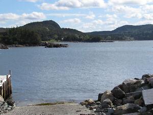 110 HARBOUR DRIVE, COLLIERS..3/4 ACRE OCEAN VIEWS St. John's Newfoundland image 3