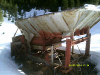 Price Reduced-GOLD SHAKER PLANT
